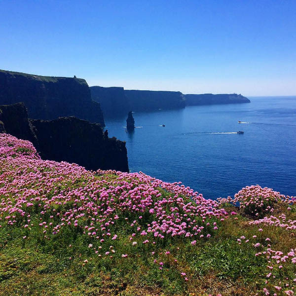 Moran's Oyster Cottage - Cliffs of Moher