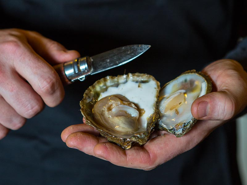 Moran's Oyster Cottage - Opening Oysters