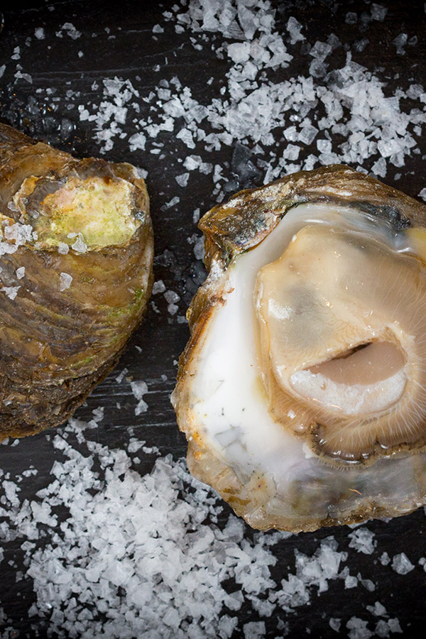 Oysters with Salt