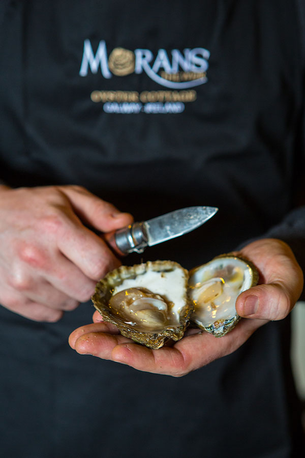 Oyster Opening